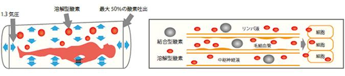 高気圧酸素カプセルの原理